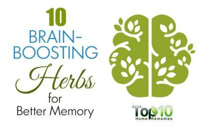10 Brain-Boosting Herbs for Better Memory