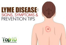 Lyme Disease: Signs, Symptoms and Prevention Tips