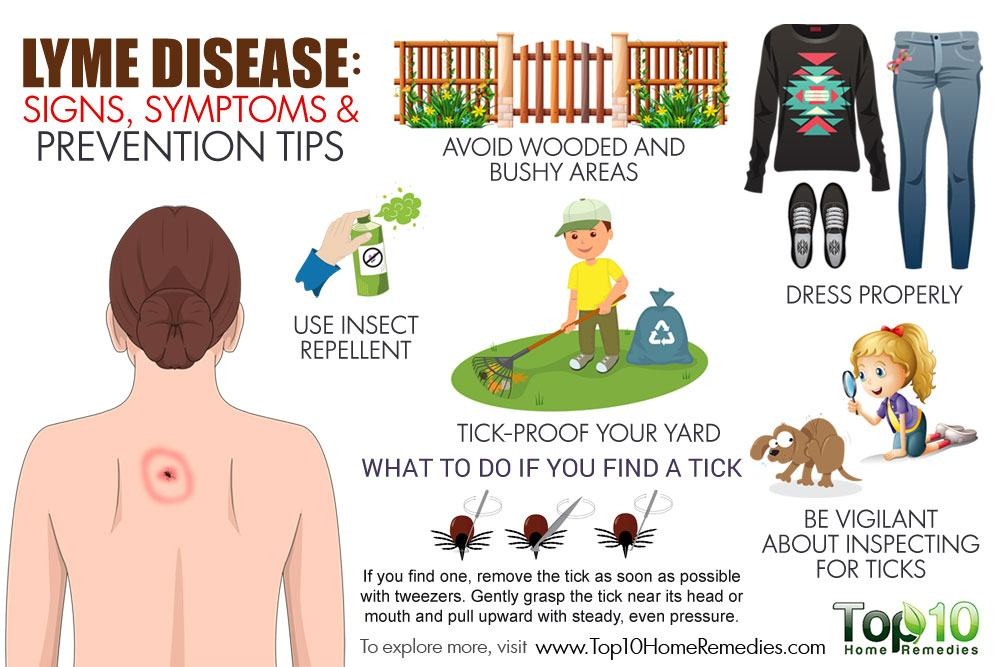 Lyme Disease: Signs, Symptoms and Prevention Tips | Top 10 ...
