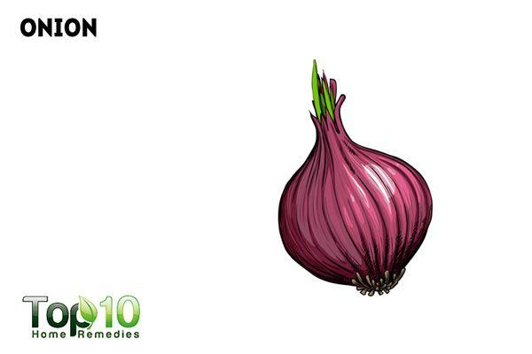 red onion for fire ant sting