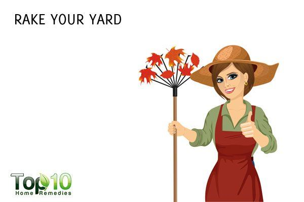 rake your yard to lose weight