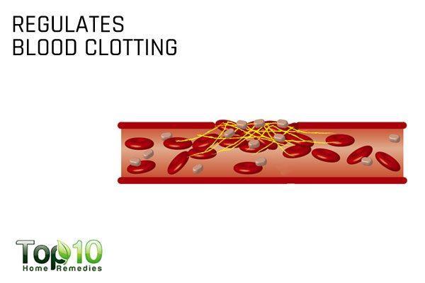 regulates blood clotting
