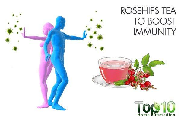 rosehips tea to boost immune system