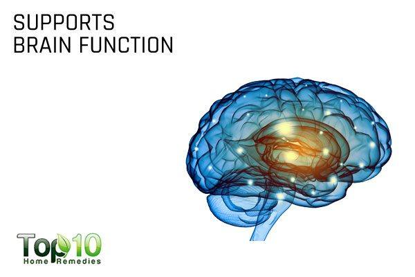vitamin K supports brain health