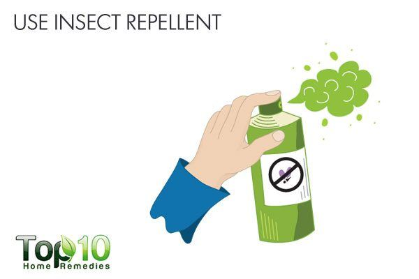 use insect repellent to avoid lyme disease