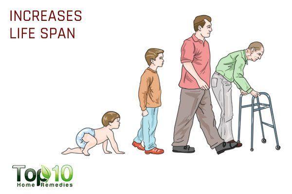 increases life span