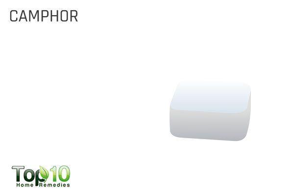 use camphor to repel flies