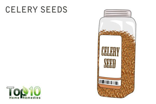 celery seeds to increase urine output