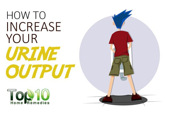 How To Increase Your Urine Output Page 3 Of 3 Top 10