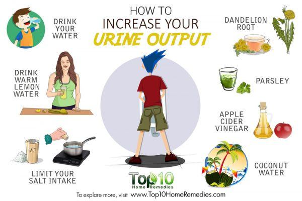 how to increase your urine output