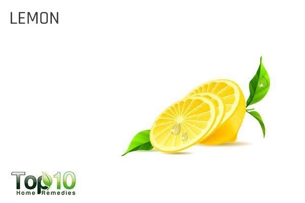 lemon for dog itching