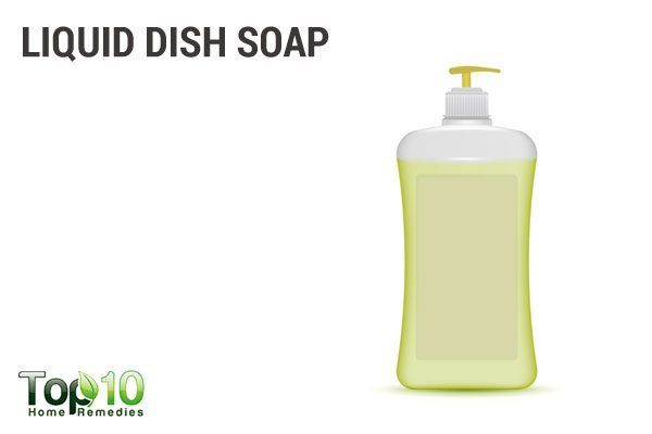 liquid dish soap to remove ticks