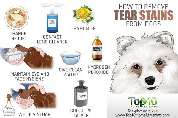 how to remove tear stains from dogs