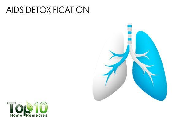 stinging nettle aids detoxification