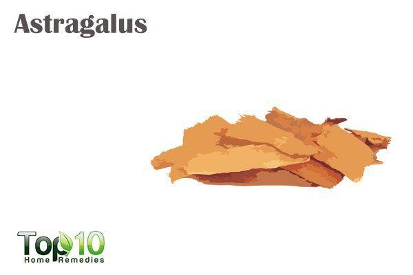 astragulus for mononucleosis