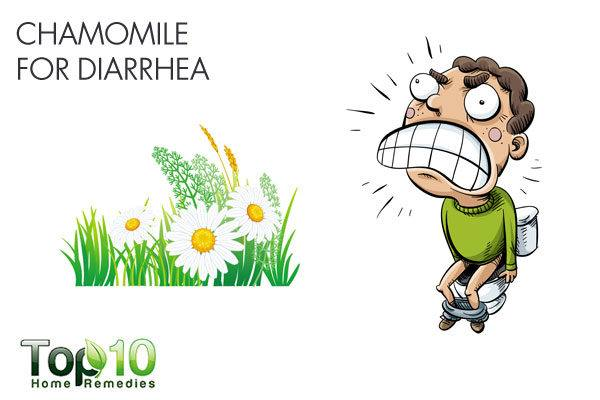 chamomile for diarrhea