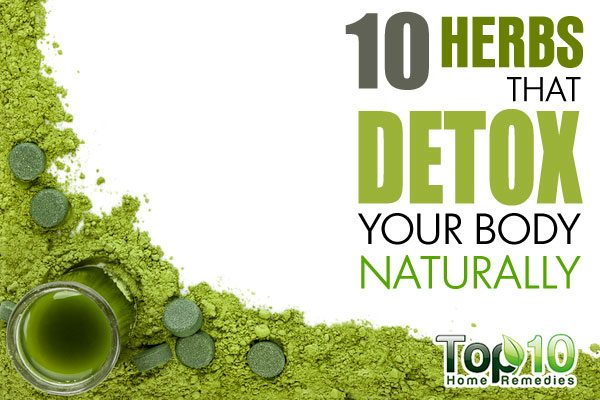 How Can You Detox Your Body Naturally