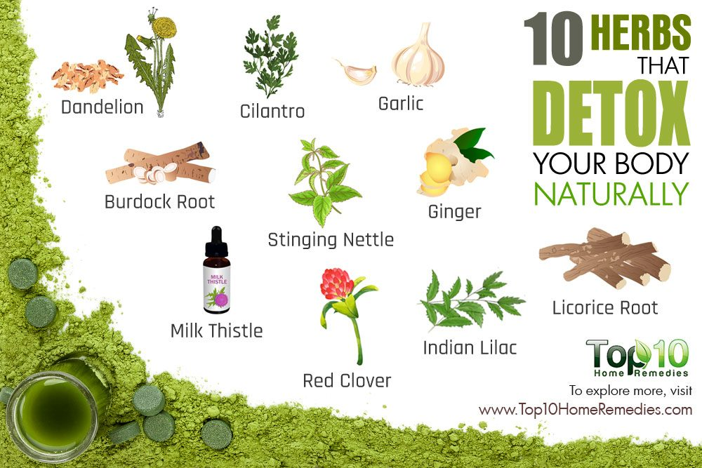 10 Herbs That Detox Your Body Naturally Top 10 Home Remedies
