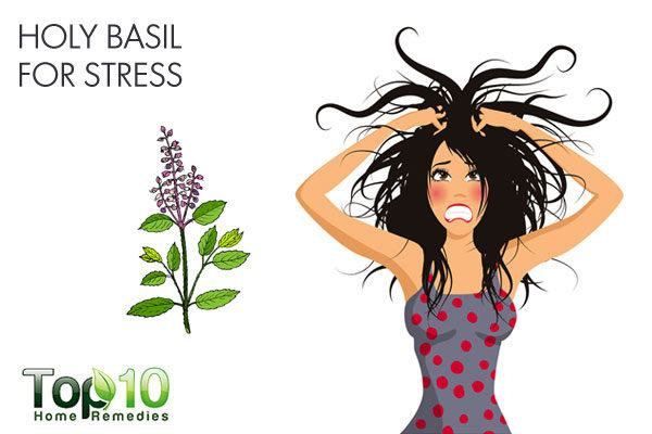 holy basil for stress