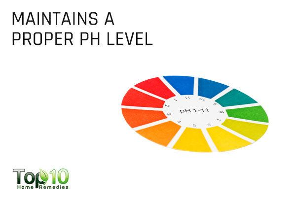 apple cider maintains pH level