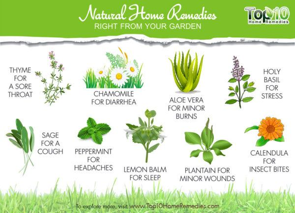 natural home remedies right from your garden