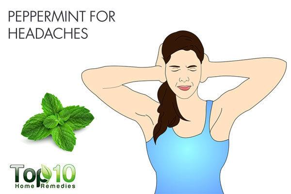 peppermint for headaches