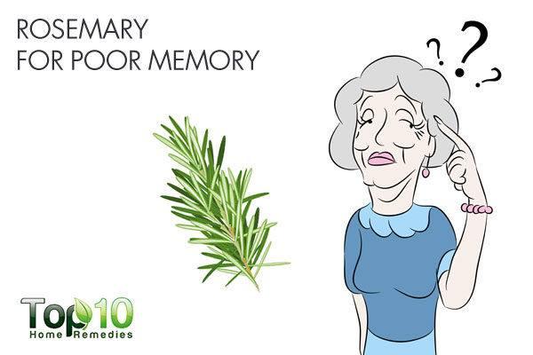 rosemary for poor memory