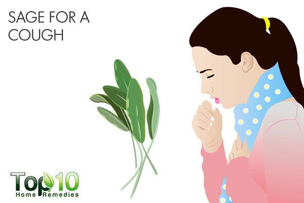 sage for cough