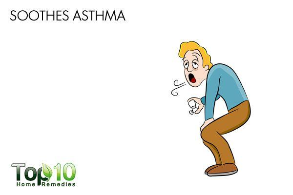 atinging nettle soothes asthma