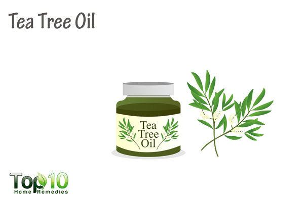 tea tree oil for molluscum contagiosum