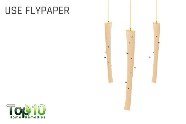 use flypaper to get rid of flies