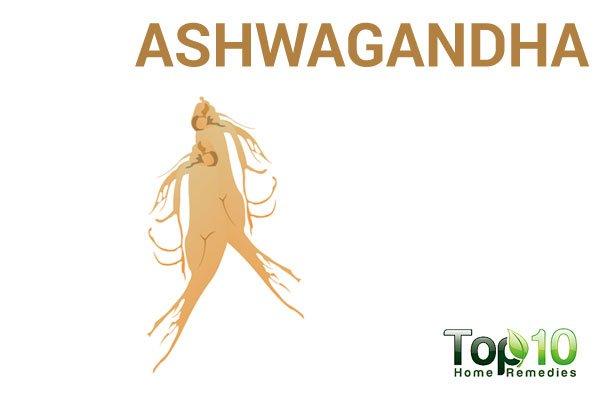 ashwagandha for adrenal fatigue