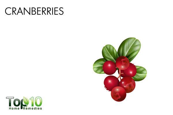 cranberries for bladder infection in dogs