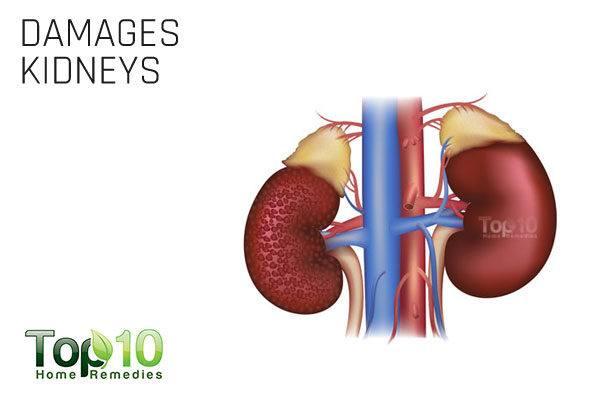 excess salt damages kidneys