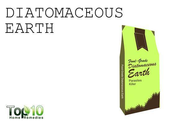 diotomaceous eath to control garden pests