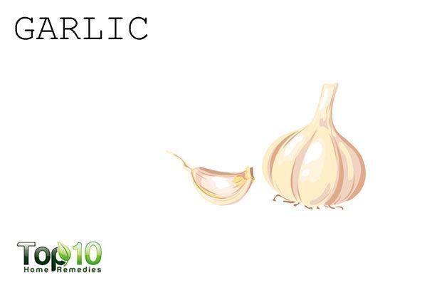 garlic to repel garden pests