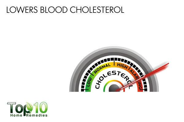 diatomaceous earth lowers cholesterol