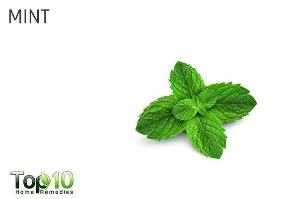 mint leaves to treat garlic breath and smell from hands