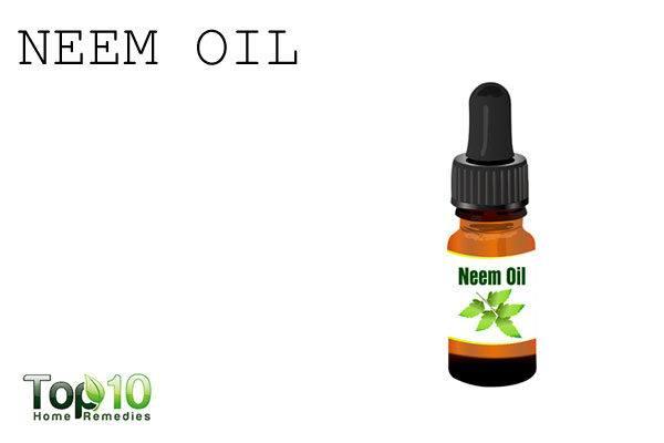 neem oil to repel garden pests