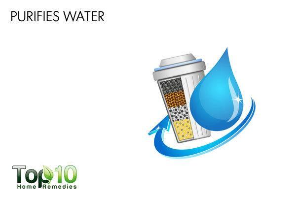 diatomaceous earth purifies water