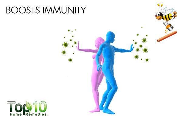 honey and cinnamon boosts immunity