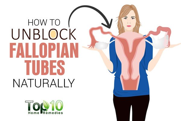 Blocked Fallopian Tubes  Causes  Treatment  Prevention And Symptoms