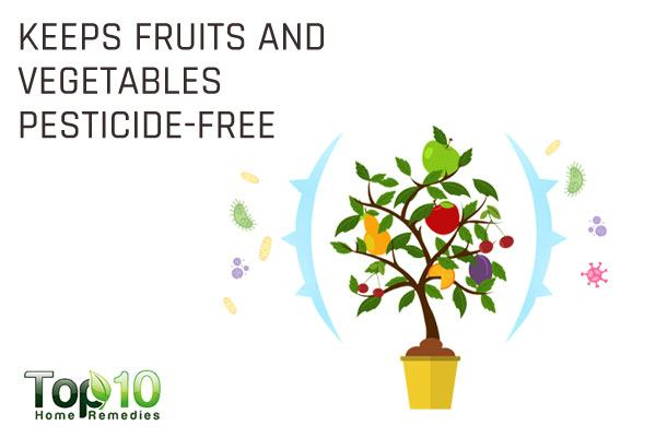 colloidal silver keeps fruits and vegetables pesticide-free