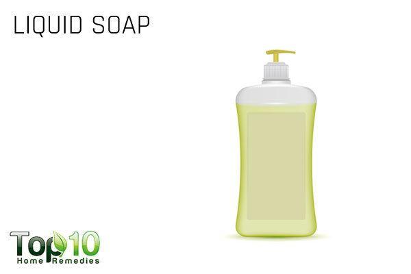 liquid soap for aphids