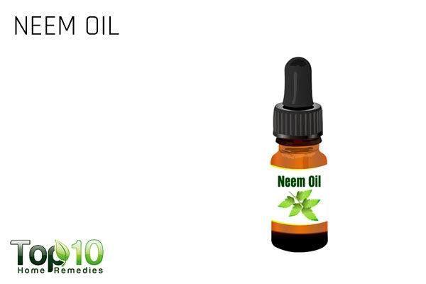 neem oil to control aphids