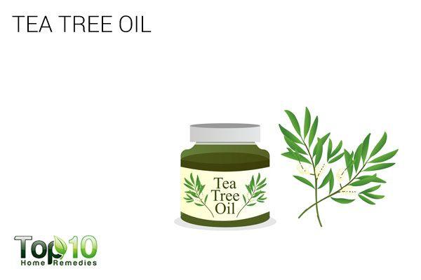 tea tree oil to treat scalp scabs