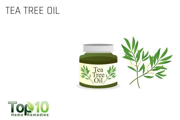 tea tree oil for folliculitis