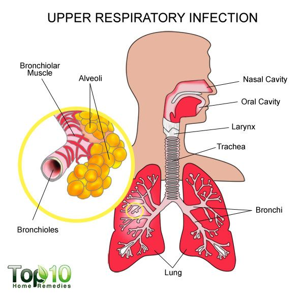 Home Remedies For For Cough And Upper Respiratory Infection