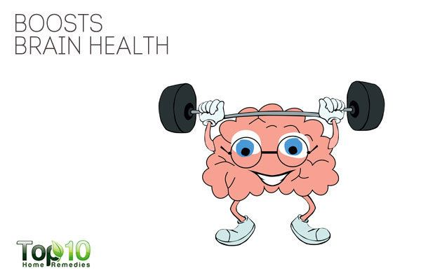 probiotics boost brain health