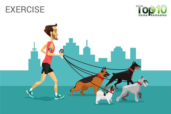 get your dog some exercise to reduce stress